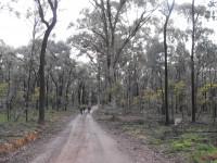 Magenta Mine Grade 2 10-12km Day walk.