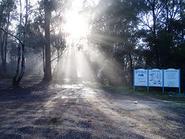 Flaggy Creek Gorge Grade 4 Day Walk 14km return