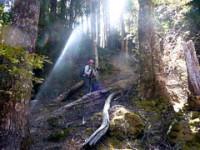Tasmania: Cradle Mountain National Park -  Grade 4 Backpack and Day Walks