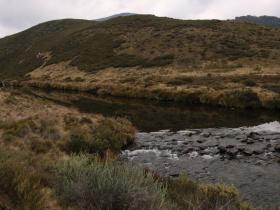 Tooma river near wheelers hut