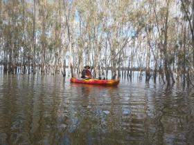 hattah lakes2 (Large)