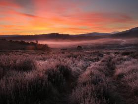 morning light at wheelers hut