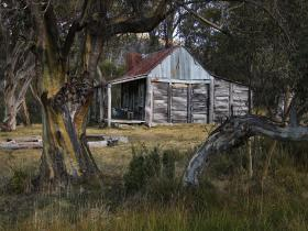 wheelers hut
