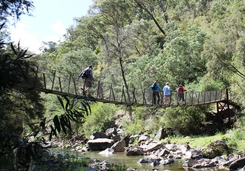 Mt Beauty Swinging Bridge